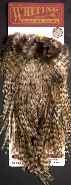 WHITING Chickabou Patch medium ginger